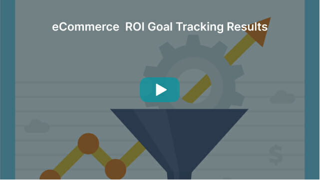 eCommerce  ROI Goal Tracking Results